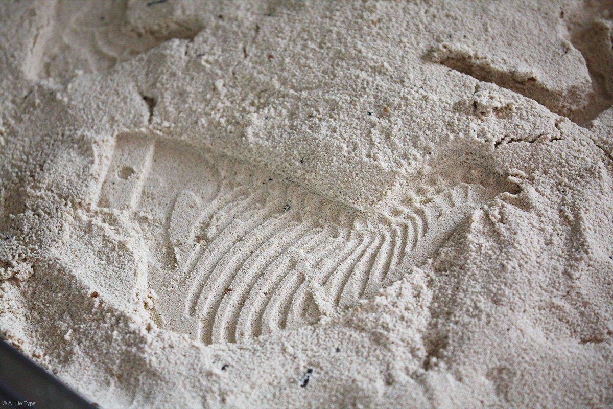 hueco-para-fosil