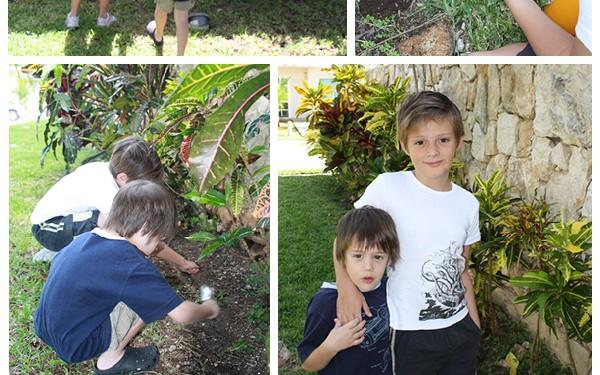 exploramos-el-jardin-600x375